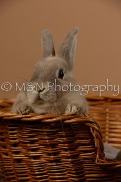 M&N Photography -_SNB0511