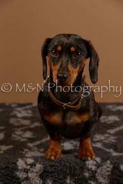 M&N Photography -_SNB0538