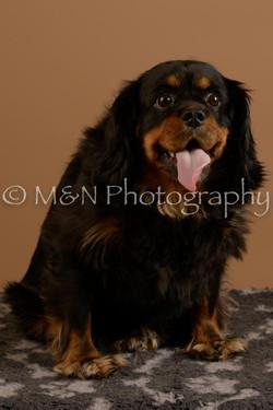 M&N Photography -_SNB0671
