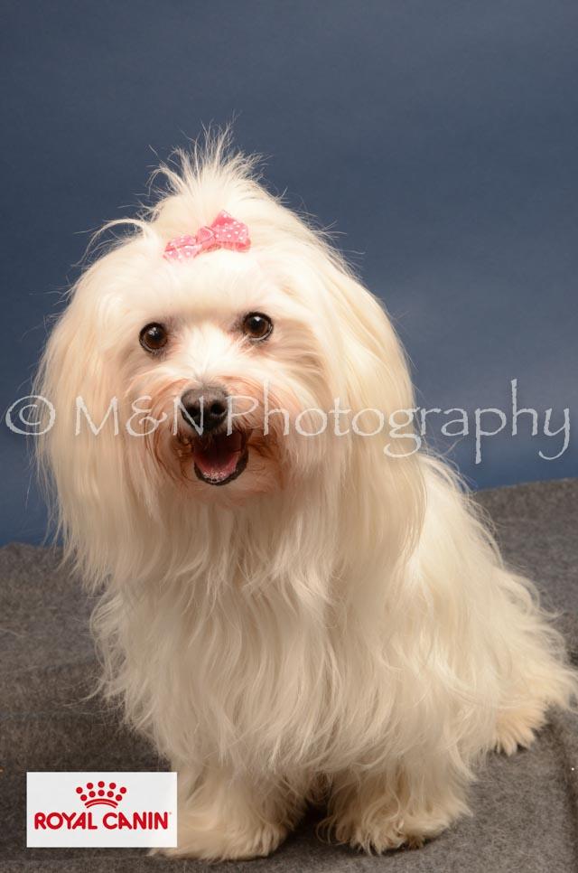 M&N Photography -DSC_4141-2