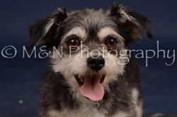 M&N Photography -DSC_0859