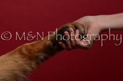 M&N Photography -DSC_3426
