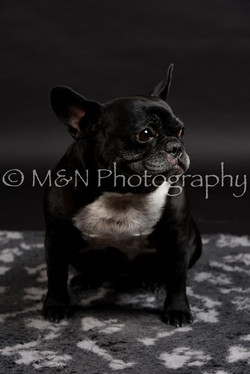 M&N Photography -DSC_2402