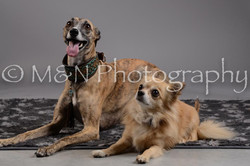 M&N Photography -DSC_1776