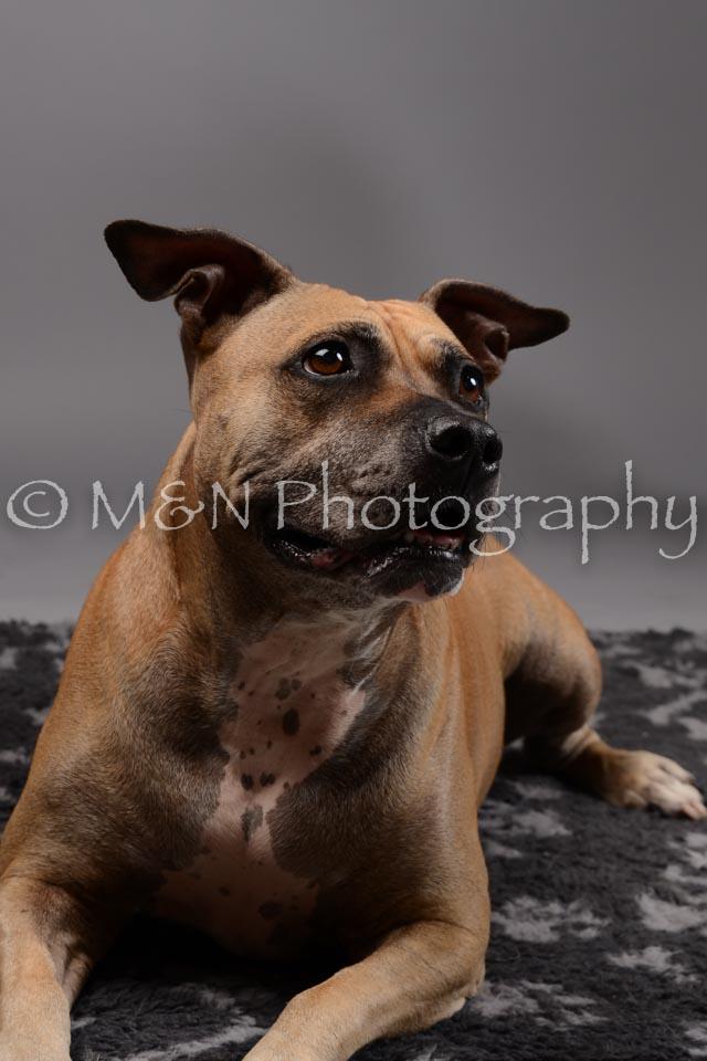M&N Photography -DSC_1862