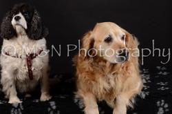 M&N Photography -DSC_5500