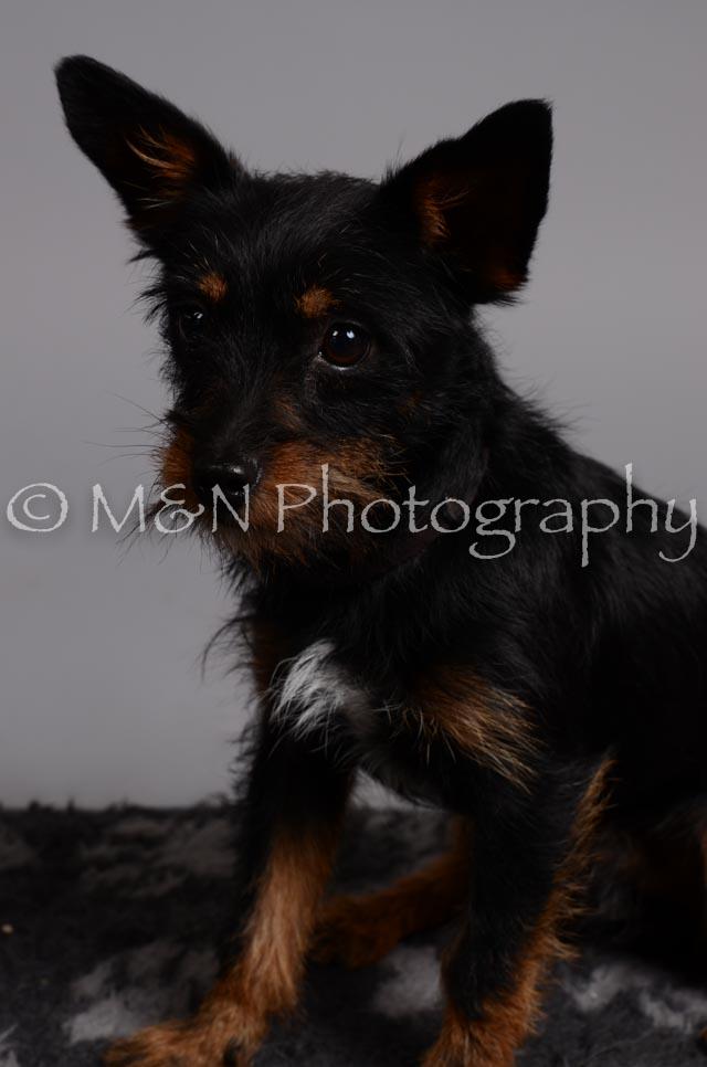 M&N Photography -DSC_2981