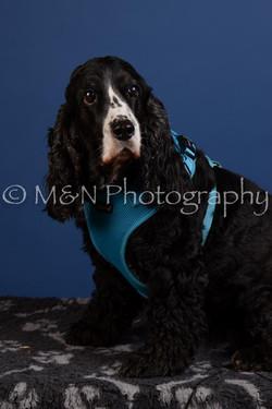 M&N Photography -DSC_5098