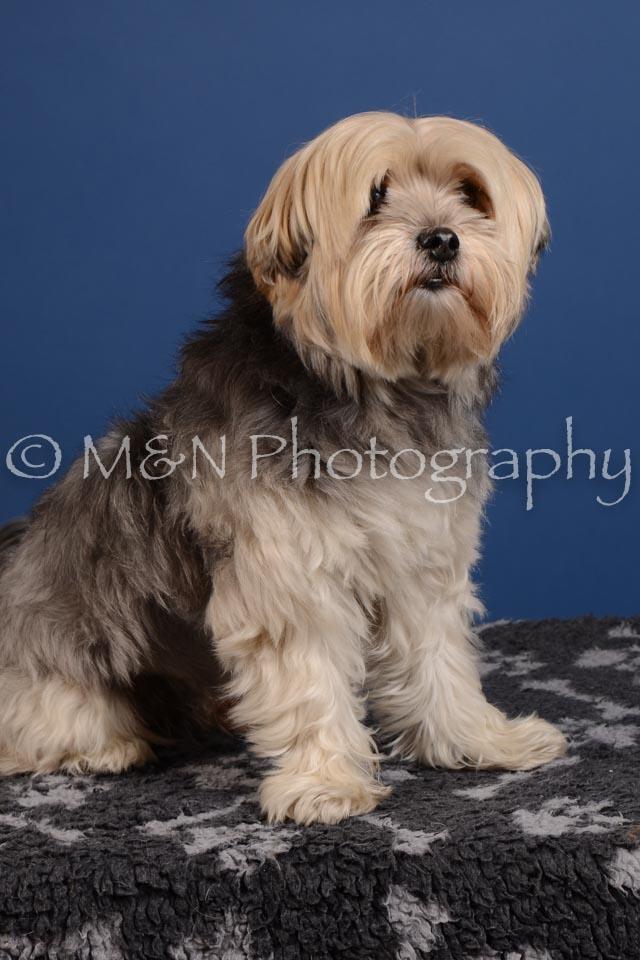 M&N Photography -DSC_4941