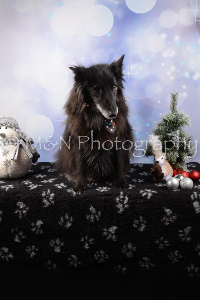 M&N Photography -DSC_6555