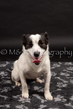 M&N Photography -DSC_9860