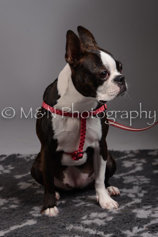 M&N Photography -DSC_2397