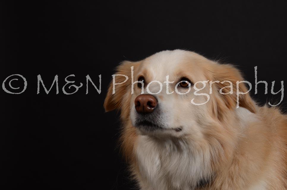 M&N Photography -DSC_5698