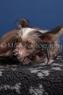 M&N Photography -DSC_5180