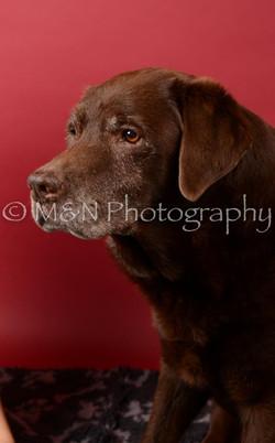 M&N Photography -DSC_6613