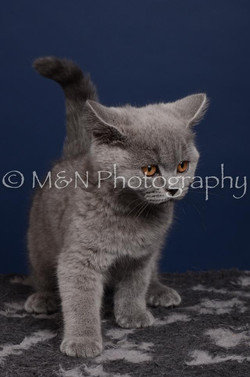 M&N Photography -DSC_4284