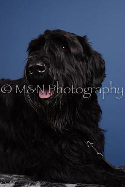 M&N Photography -DSC_4977