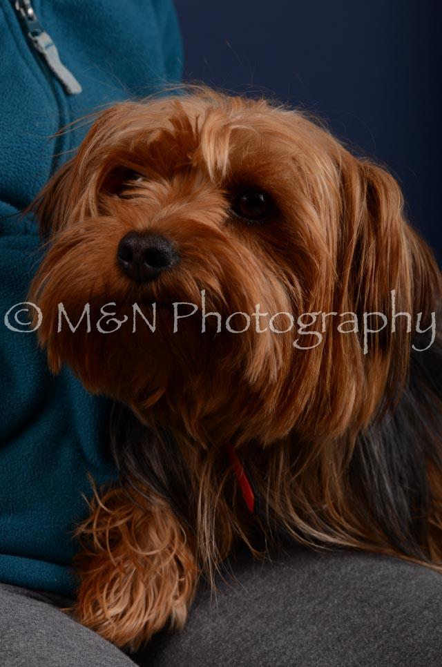 M&N Photography -DSC_4176
