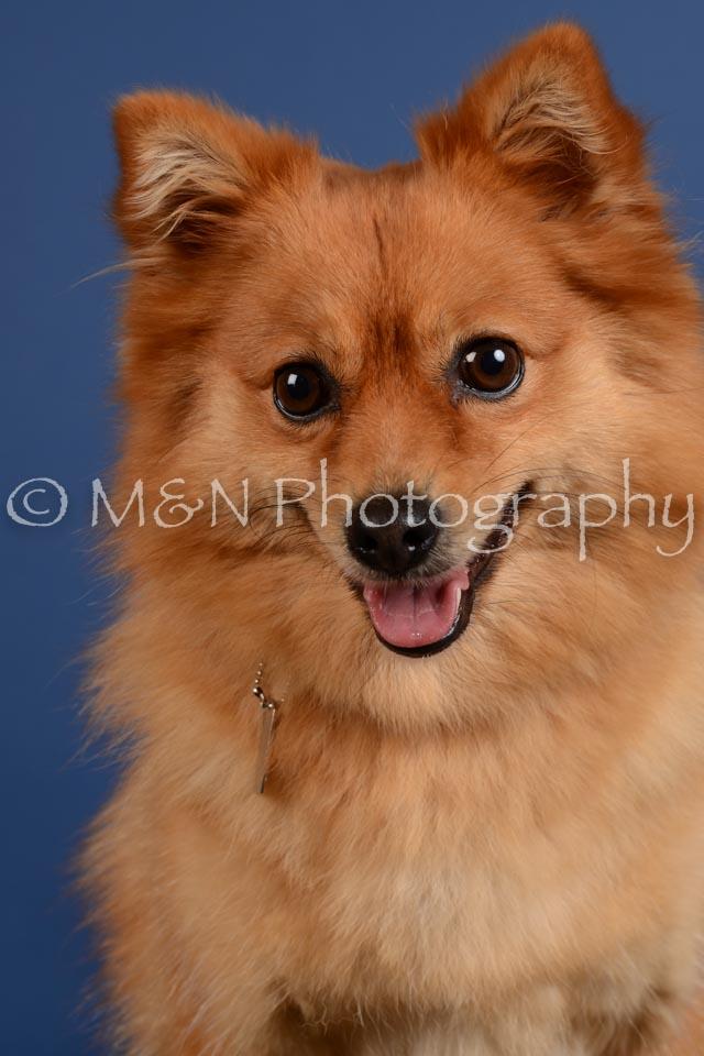 M&N Photography -DSC_5374