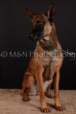 M&N Photography -DSC_5572