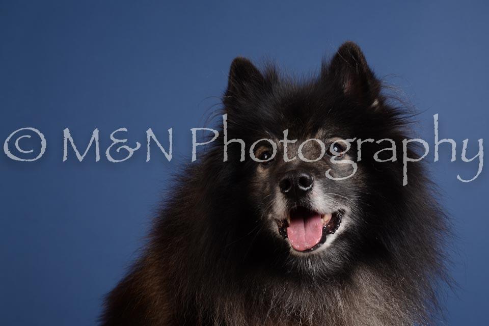 M&N Photography -DSC_4899