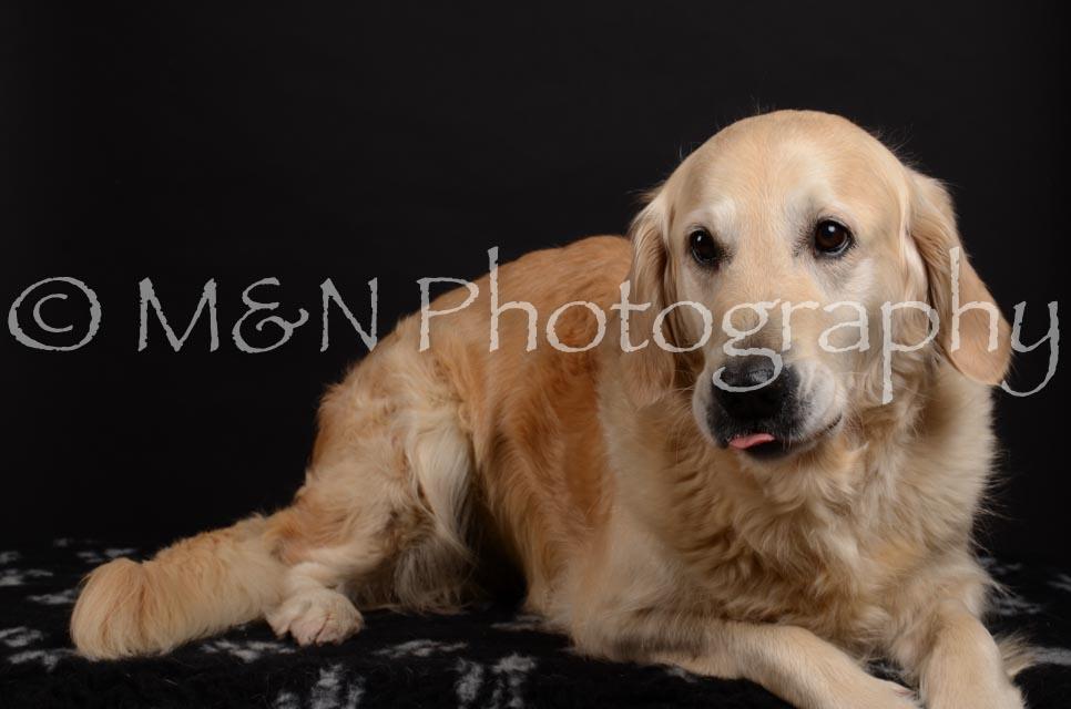 M&N Photography -DSC_5894