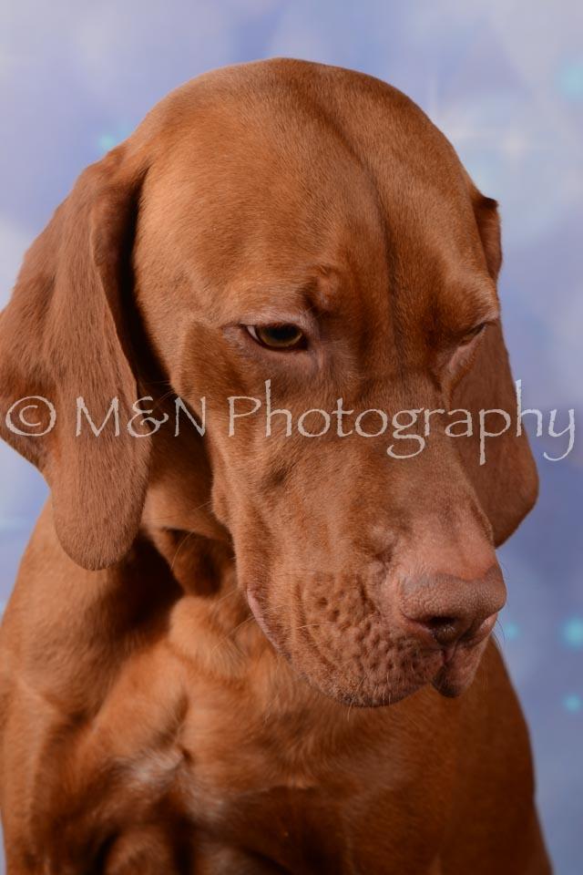 M&N Photography -DSC_7038