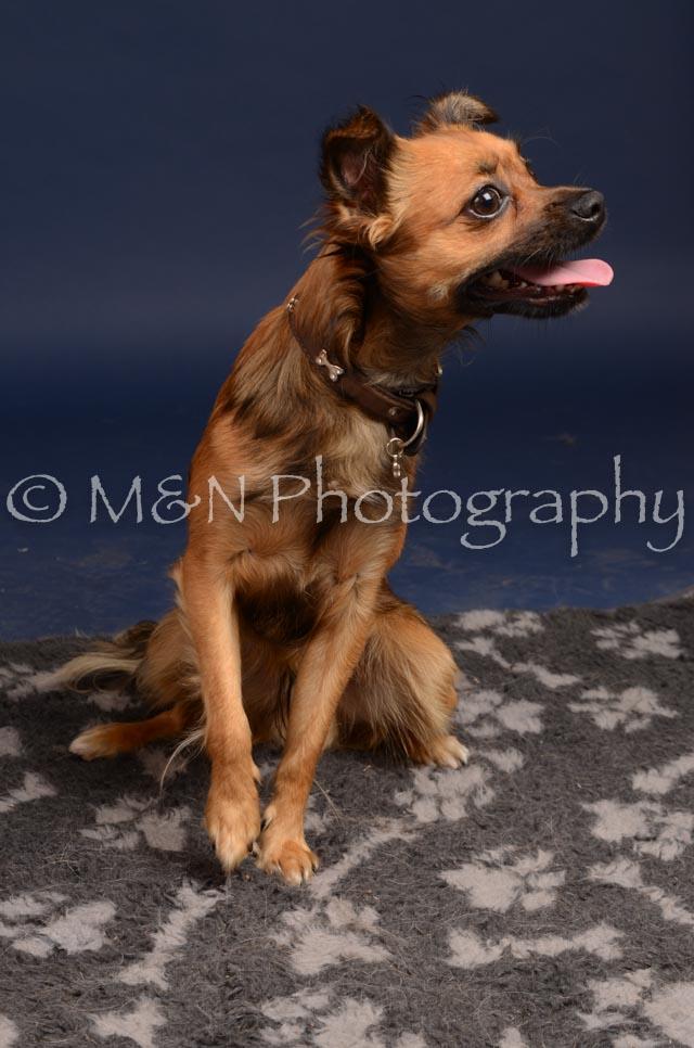 M&N Photography -DSC_0484