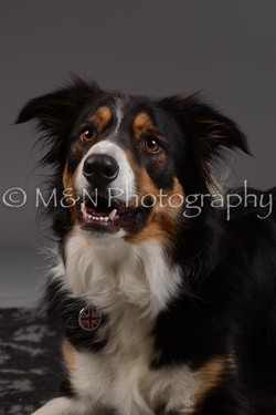 M&N Photography -DSC_2053