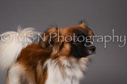 M&N Photography -DSC_2299