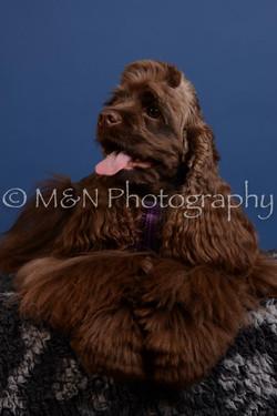M&N Photography -DSC_4922