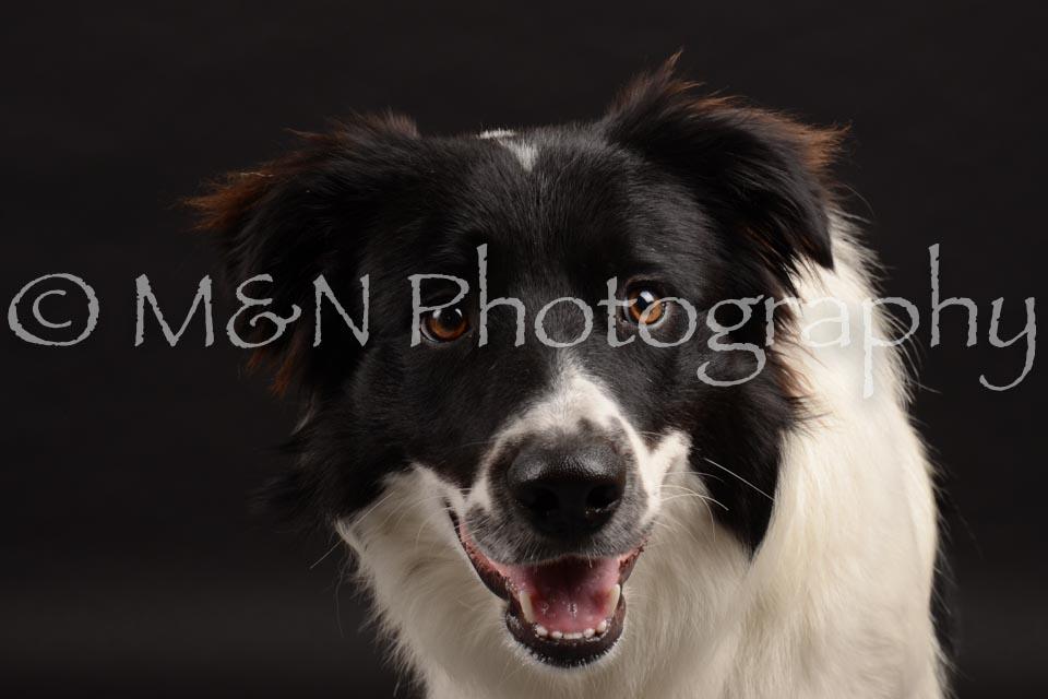 M&N Photography -DSC_9723