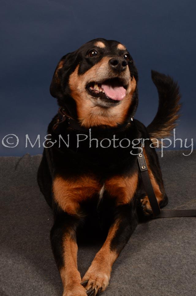 M&N Photography -DSC_4677