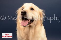 M&N Photography -DSC_4550-2