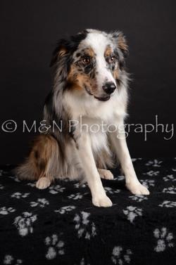 M&N Photography -DSC_5422