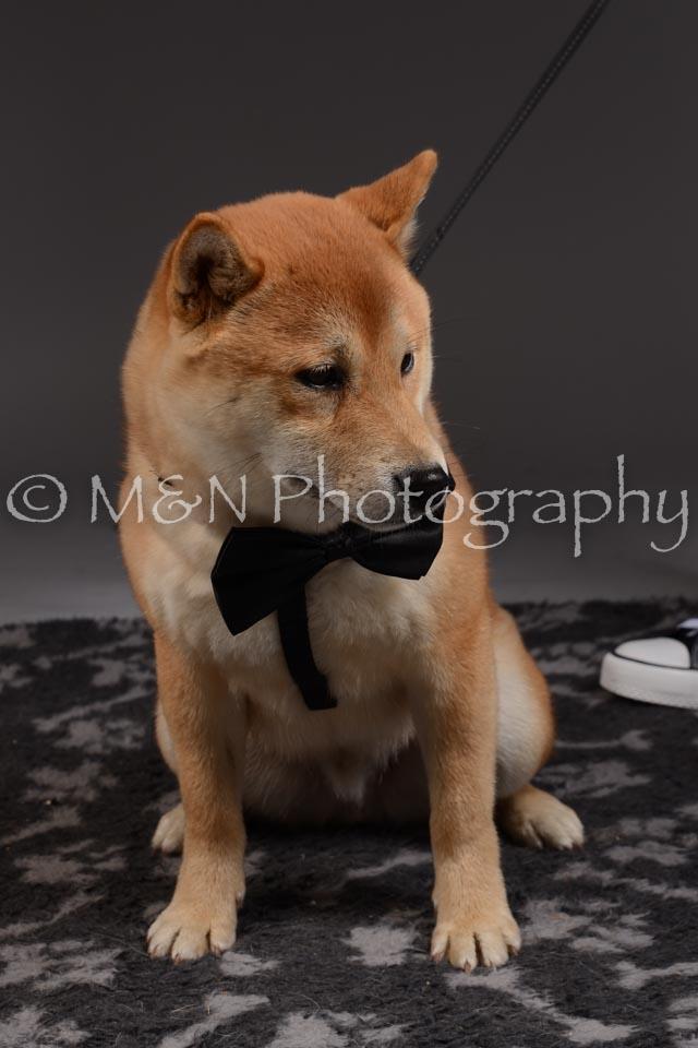 M&N Photography -DSC_2145