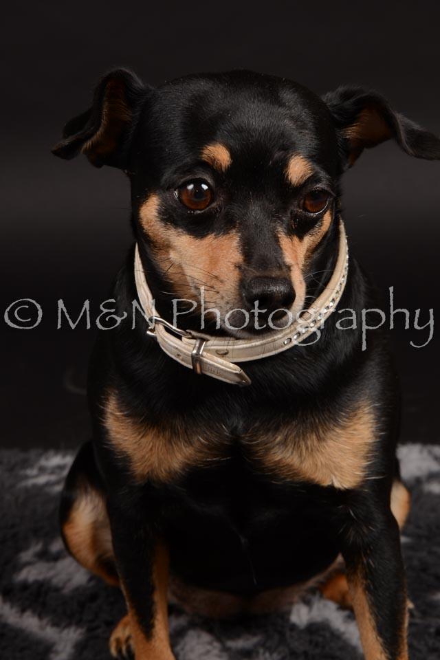 M&N Photography -DSC_9652