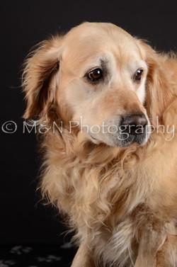M&N Photography -DSC_5491
