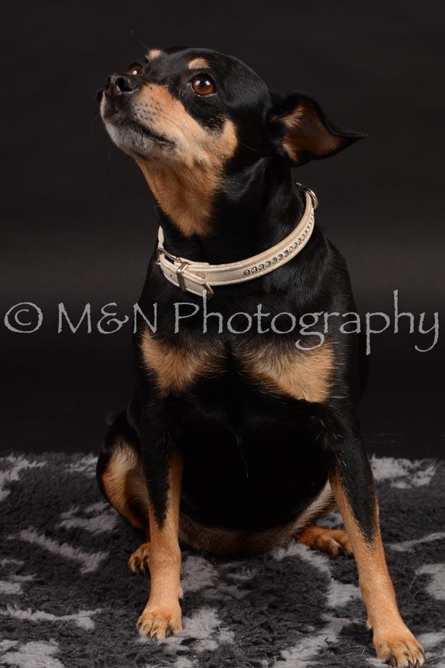 M&N Photography -DSC_9650