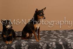 M&N Photography -_SNB0550