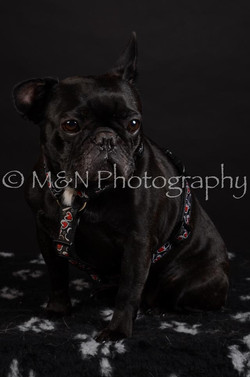 M&N Photography -DSC_5662