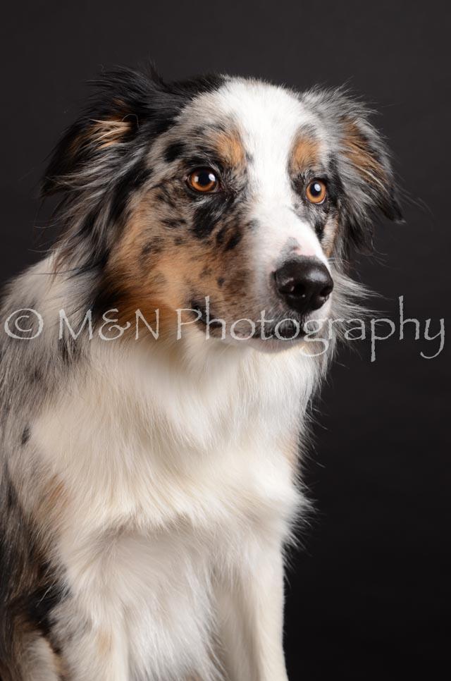 M&N Photography -DSC_5421