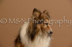 M&N Photography -_SNB0712