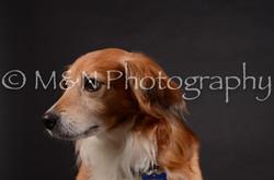 M&N Photography -DSC_5449