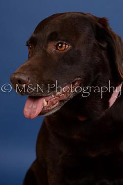M&N Photography -DSC_5143