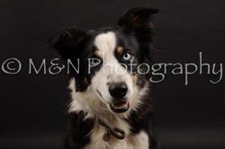 M&N Photography -DSC_9947