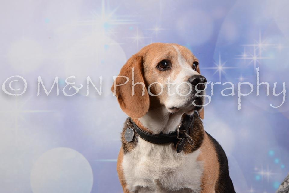 M&N Photography -DSC_6685