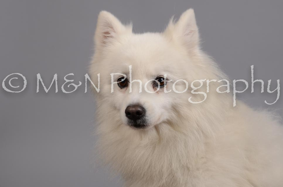 M&N Photography -DSC_2770