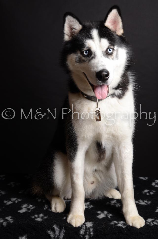 M&N Photography -DSC_5876