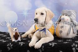 M&N Photography -DSC_6583